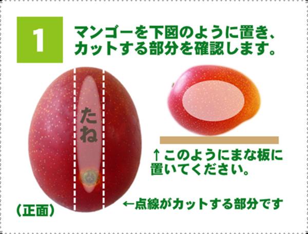 マンゴーのわかりやすい切り方