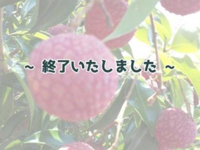 【国産】生ライチ(徳之島産) 約500g
