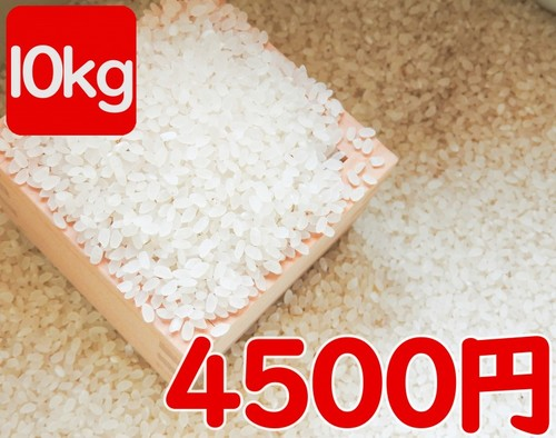 令和元年産 伊佐米ヒノヒカリ(鹿児島県伊佐市)風袋込み10kg(内容量9.5kg)送料別途