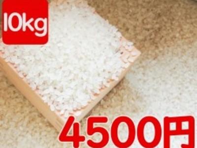 平成30年産 伊佐米ヒノヒカリ(鹿児島県伊佐市)風袋込み10kg(内容量9.5kg)送料別途