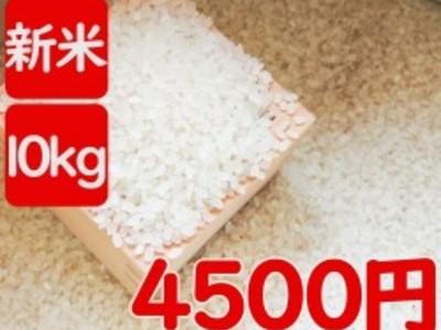 令和2年産 伊佐米ヒノヒカリ(鹿児島県伊佐市)風袋込み10kg(内容量9.5kg)送料別途
